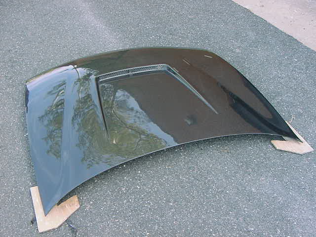JDM 94-01 TYPE R CW Hood | DC2 - Click Image to Close